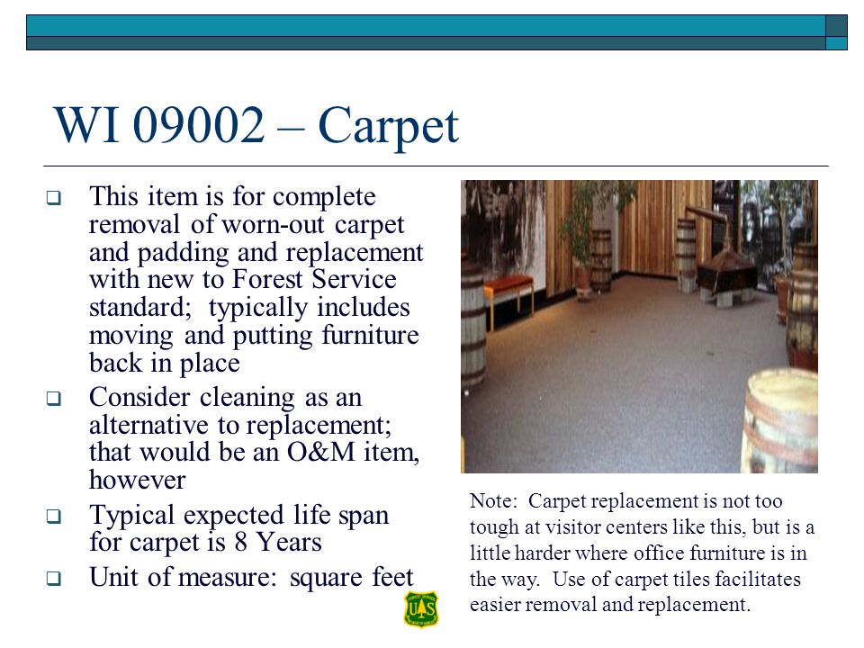 WI 09002 – Carpet This item is for complete removal of worn-out carpet and padding and replacement with new to Forest Service standard; typically incl