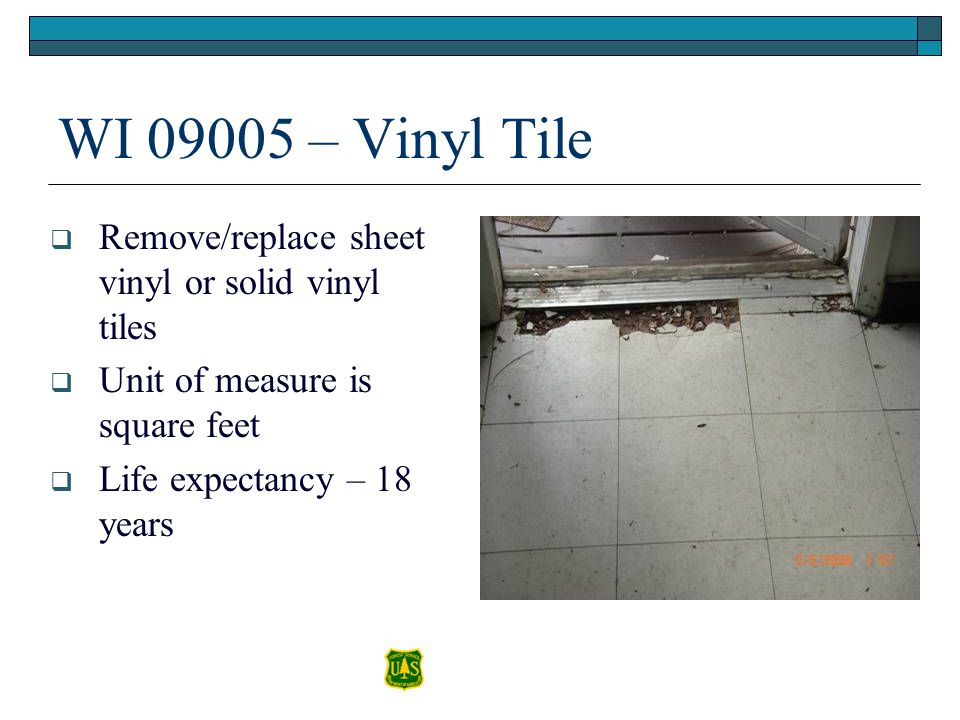 WI 09005 – Vinyl Tile Remove/replace sheet vinyl or solid vinyl tiles Unit of measure is square feet Life expectancy – 18 years
