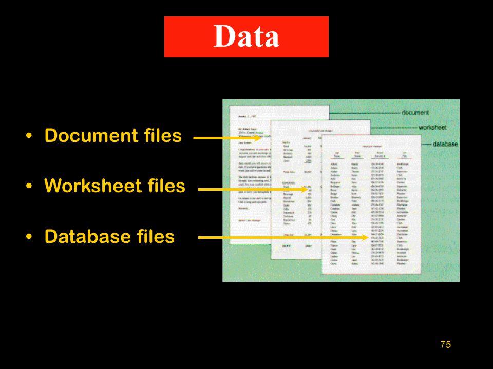 75 Data Document files Worksheet files Database files