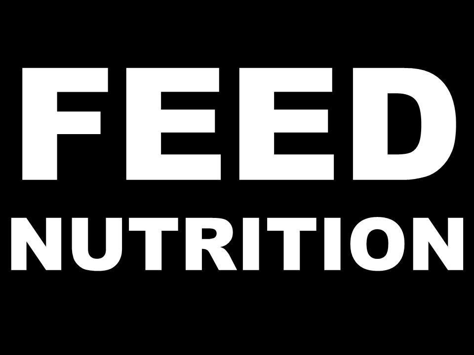 FEED NUTRITION
