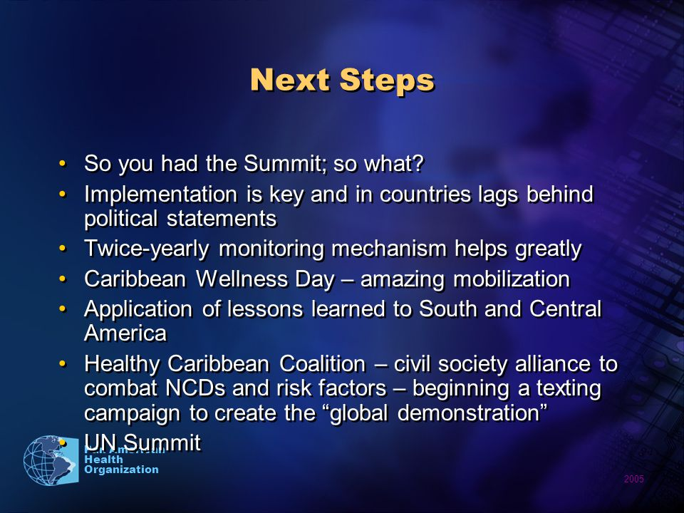 2005 Pan American Health Organization Next Steps So you had the Summit; so what.