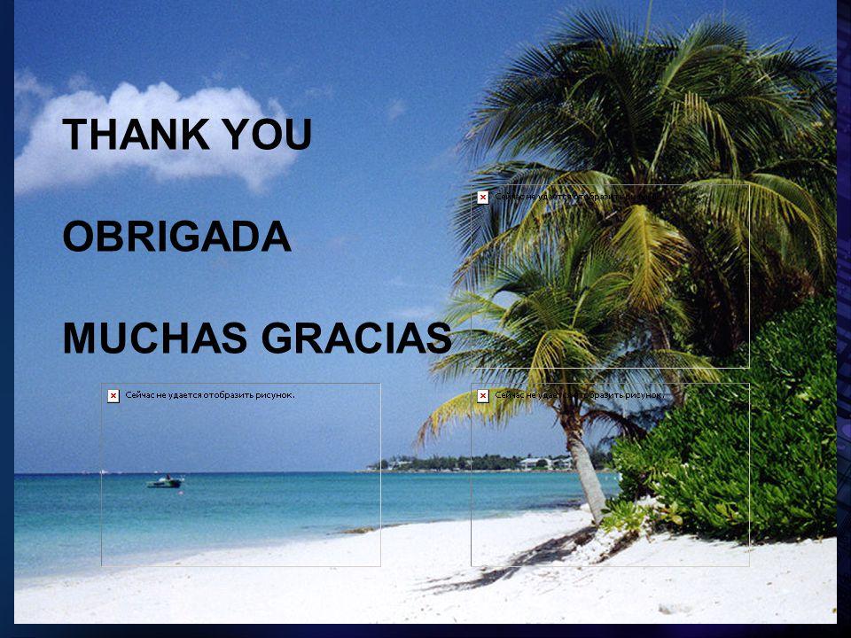 2005 Pan American Health Organization THANK YOU OBRIGADA MUCHAS GRACIAS