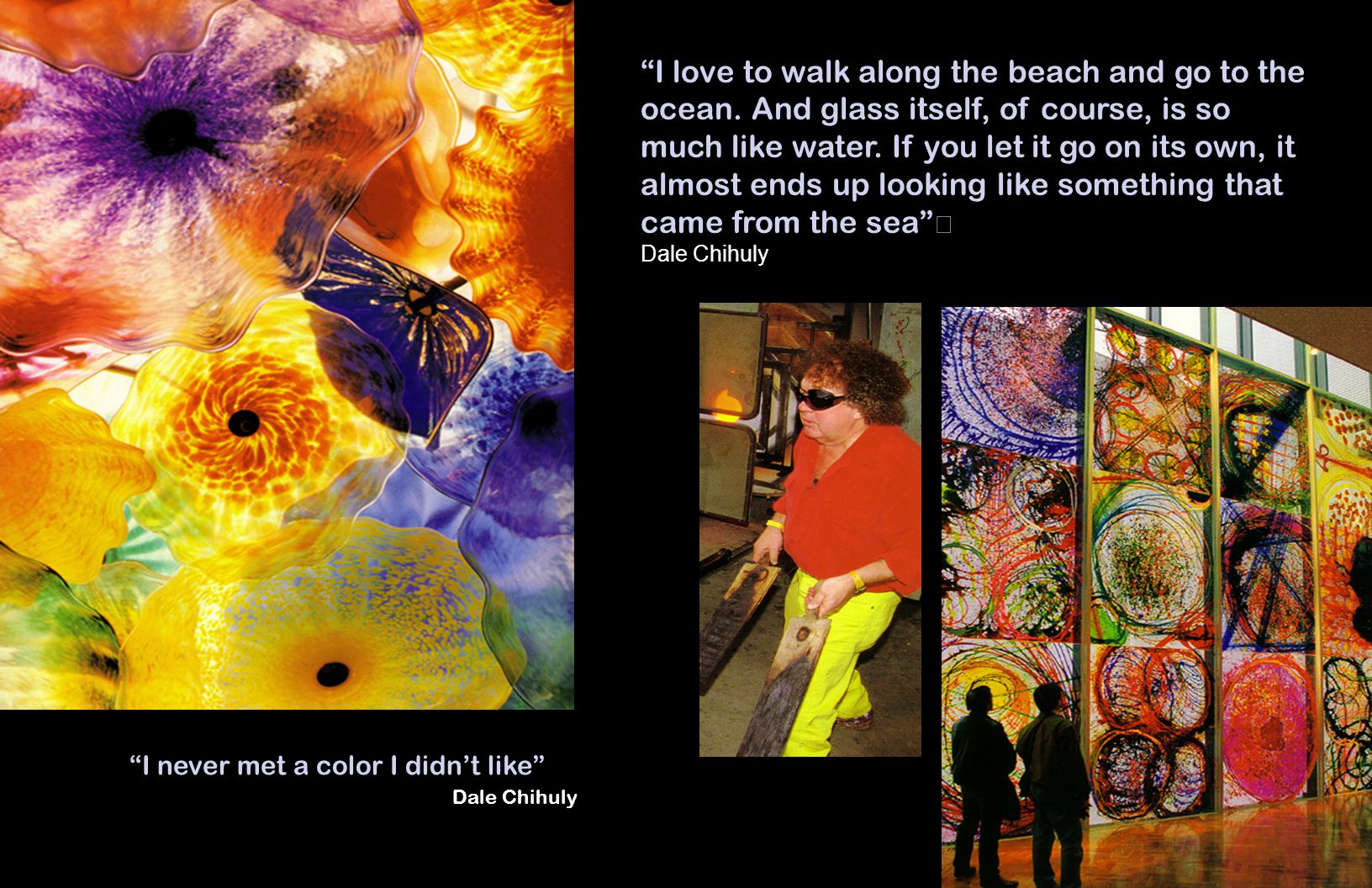 I never met a color I didnt like Dale Chihuly I love to walk along the beach and go to the ocean.