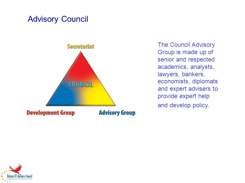 Advisory Council The Council Advisory Group is made up of senior and respected academics, analysts, lawyers, bankers, economists, diplomats and expert advisers to provide expert help and develop policy.