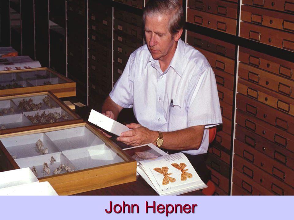 John Hepner