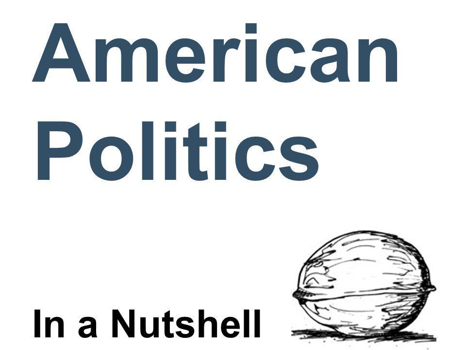 American Politics In a Nutshell