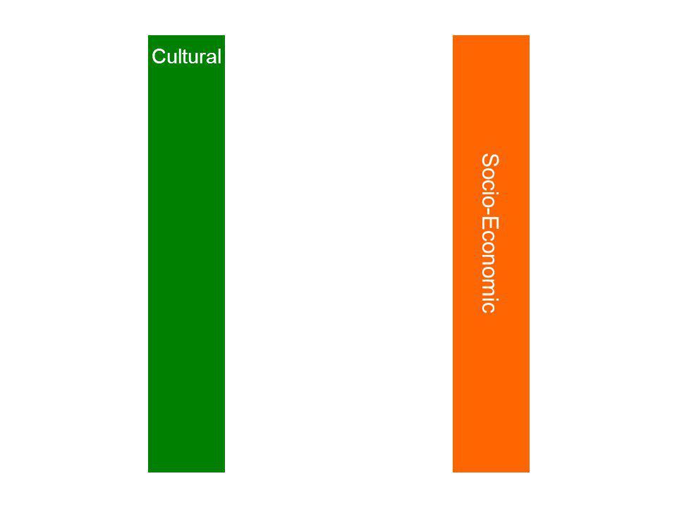 Cultural Socio-Economic