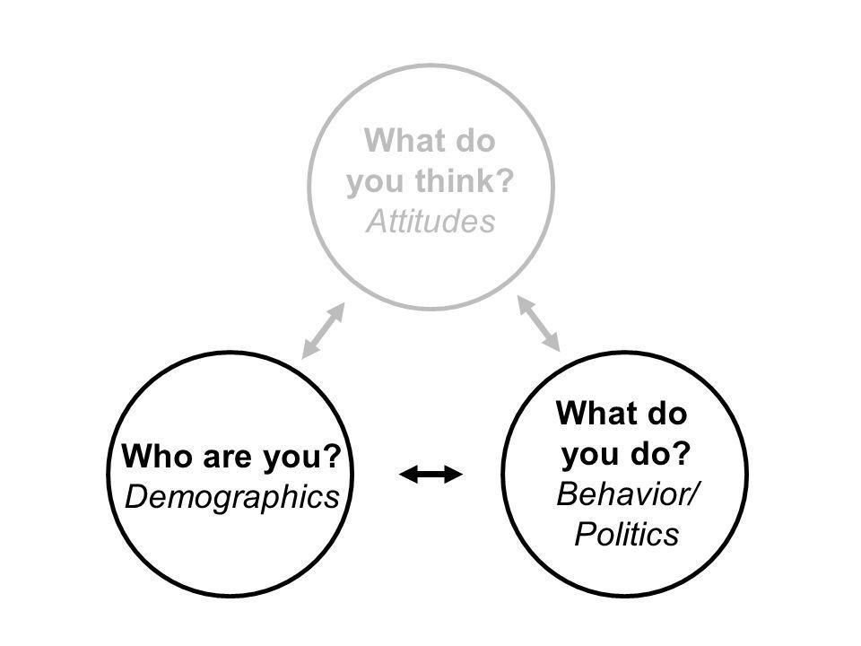 Who are you? Demographics What do you think? Attitudes What do you do? Behavior/ Politics
