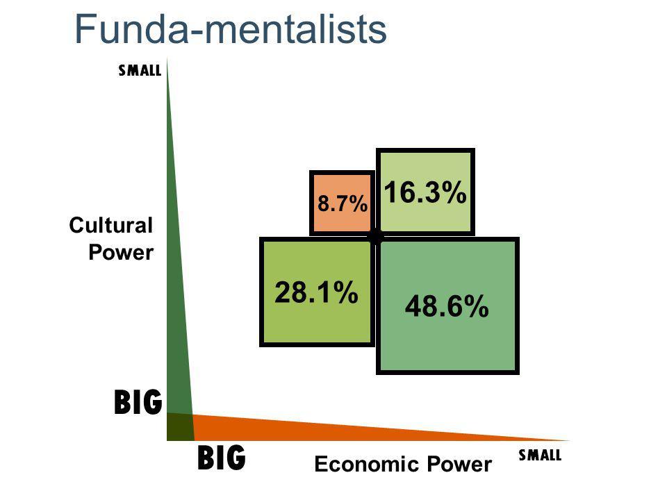 Cultural Power SMALL BIG SMALL BIG Economic Power 48.6% 16.3% 28.1% 8.7% Funda-mentalists