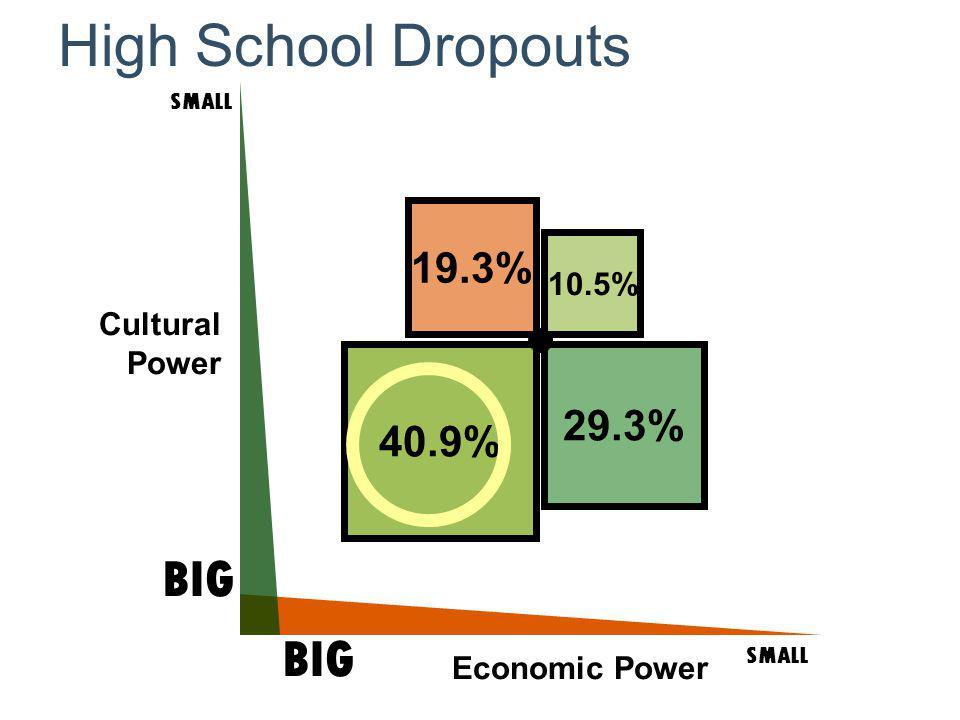Cultural Power SMALL BIG SMALL BIG Economic Power High School Dropouts 40.9% 19.3% 29.3% 10.5%