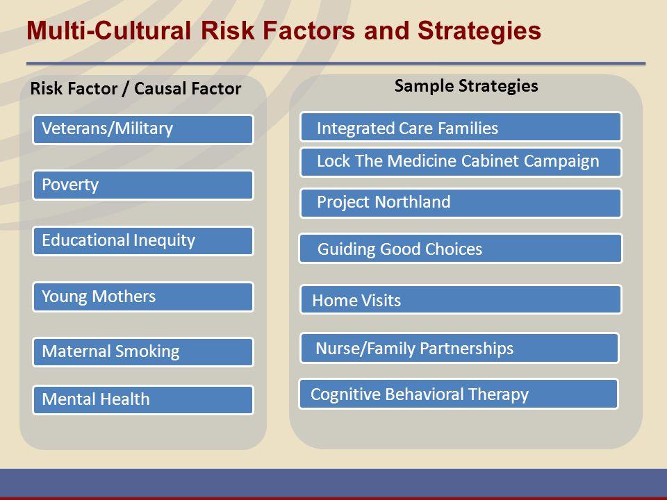 Multi-Cultural Risk Factors and Strategies Risk Factor / Causal Factor Sample Strategies Integrated Care Families Veterans/MilitaryEducational Inequit