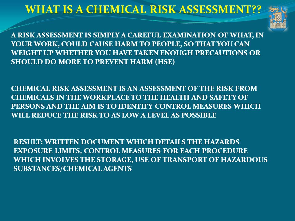 WHAT IS A CHEMICAL RISK ASSESSMENT?? A RISK ASSESSMENT IS SIMPLY A CAREFUL EXAMINATION OF WHAT, IN YOUR WORK, COULD CAUSE HARM TO PEOPLE, SO THAT YOU