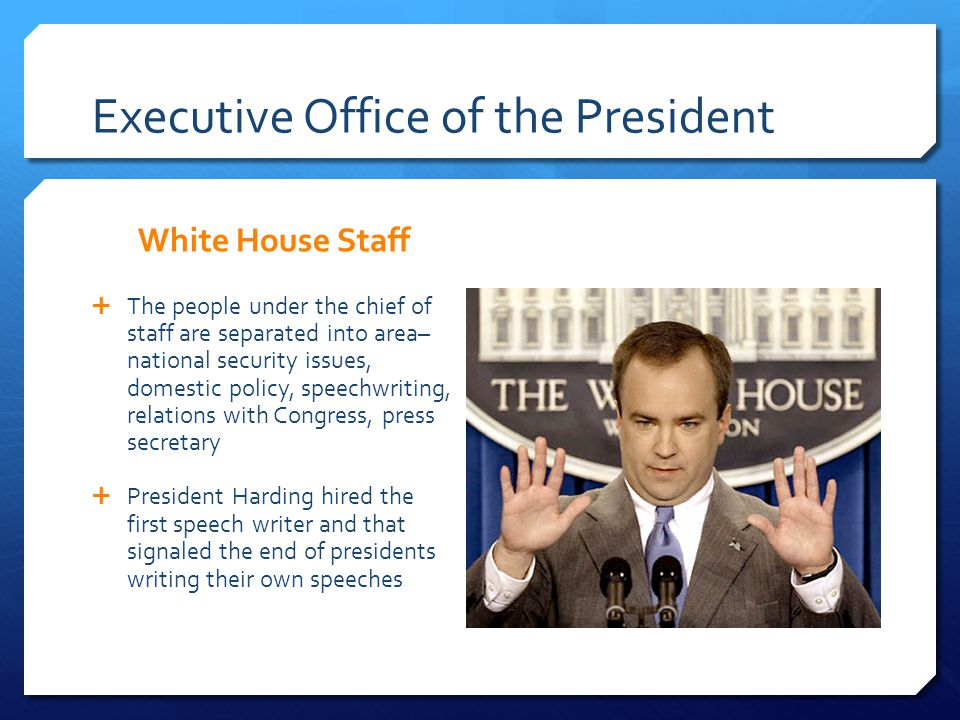 Executive Office of the President White House Staff The people under the chief of staff are separated into area– national security issues, domestic po