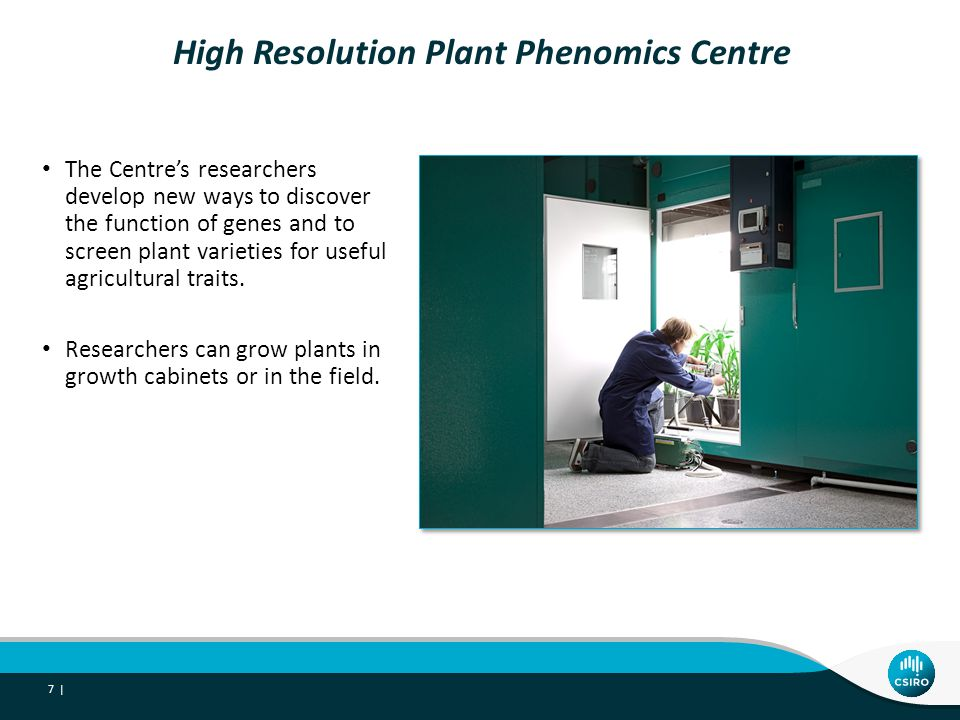 The Plant Accelerator A high-tech glasshouse contains plant conveyor systems, and imaging, robotic and computing equipment.