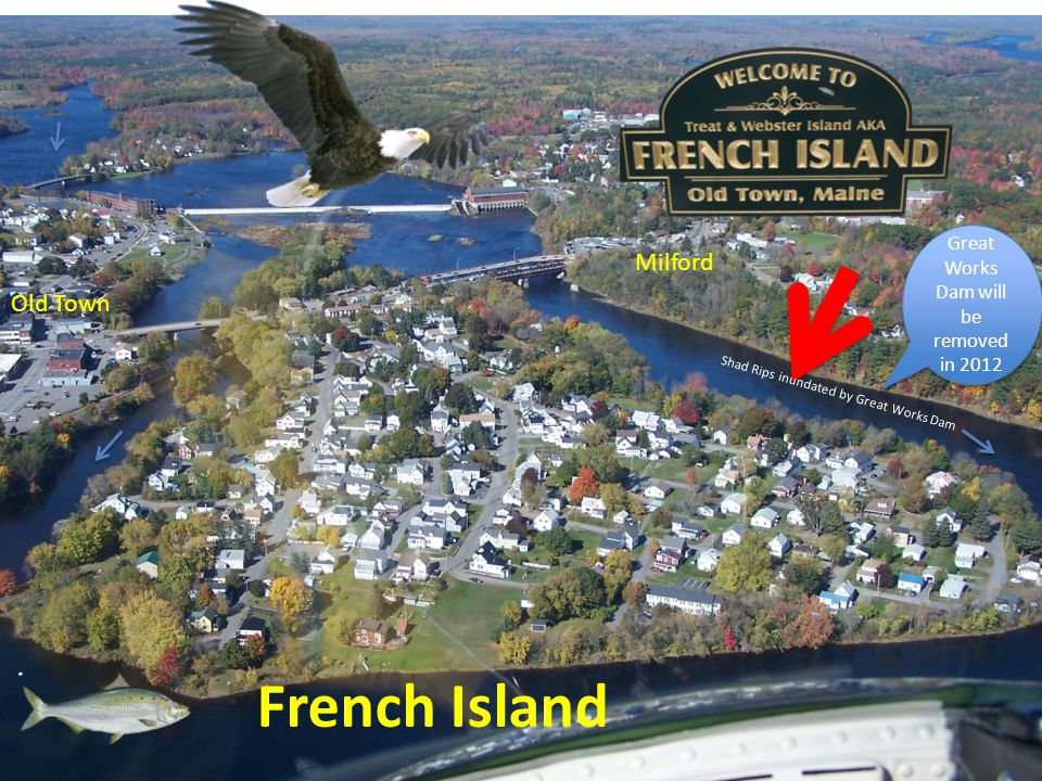 French Island Milford Old Town Shad Rips inundated by Great Works Dam Great Works Dam will be removed in 2012
