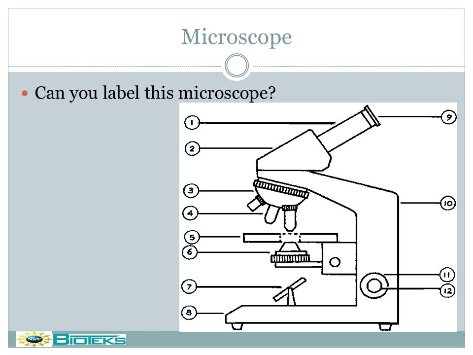Microscope Do you want a footer? Can you label this microscope?