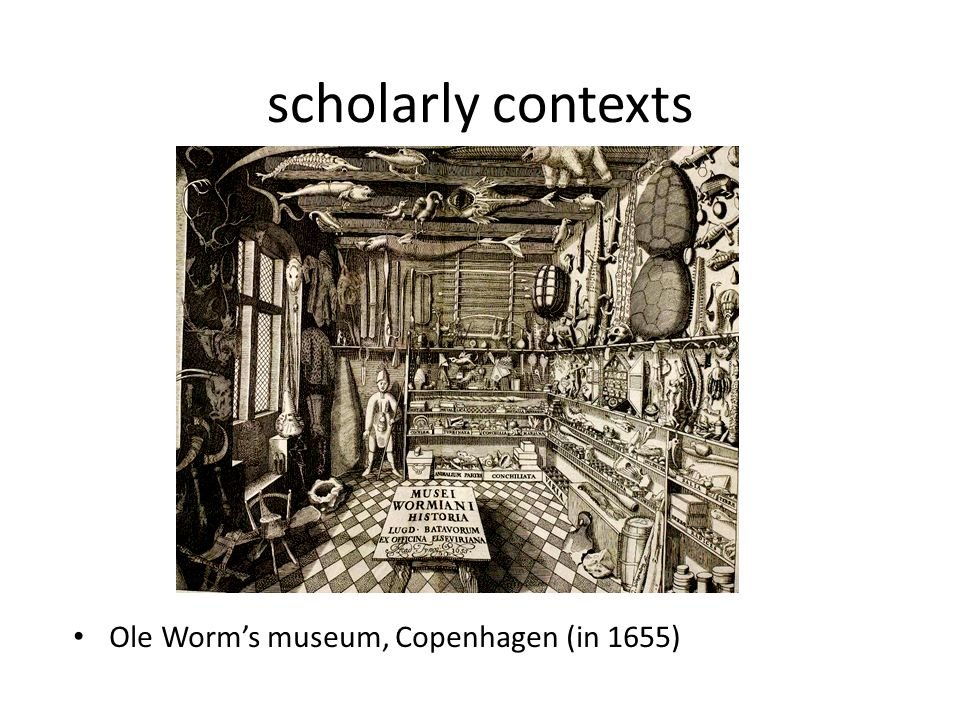 scholarly contexts Ole Worms museum, Copenhagen (in 1655)