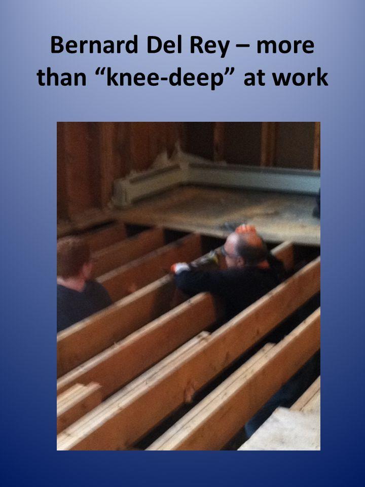 Bernard Del Rey – more than knee-deep at work