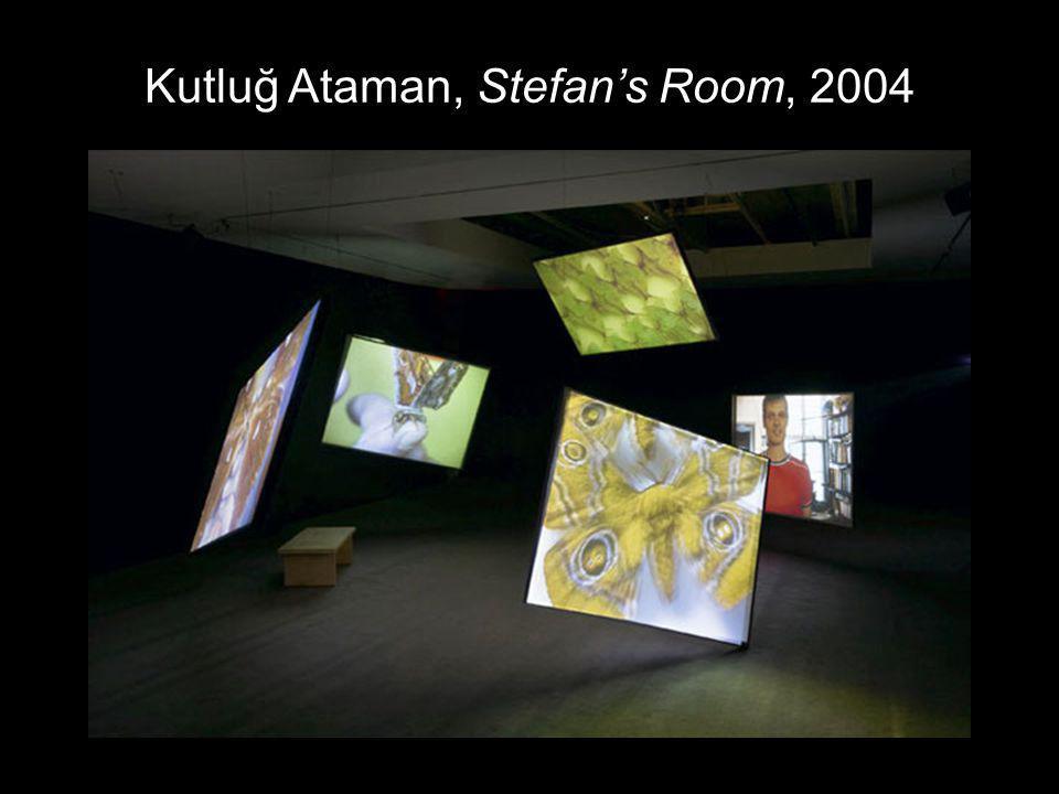Kutluğ Ataman, Stefans Room, 2004