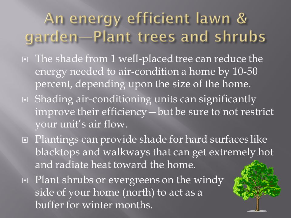 The shade from 1 well-placed tree can reduce the energy needed to air-condition a home by 10-50 percent, depending upon the size of the home.