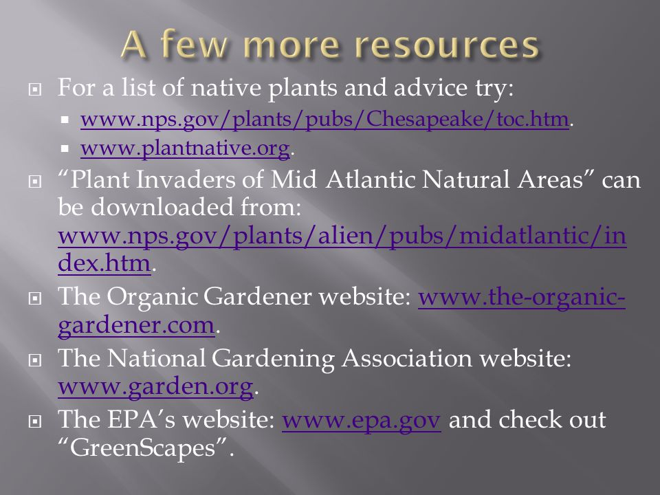 For a list of native plants and advice try: www.nps.gov/plants/pubs/Chesapeake/toc.htm.
