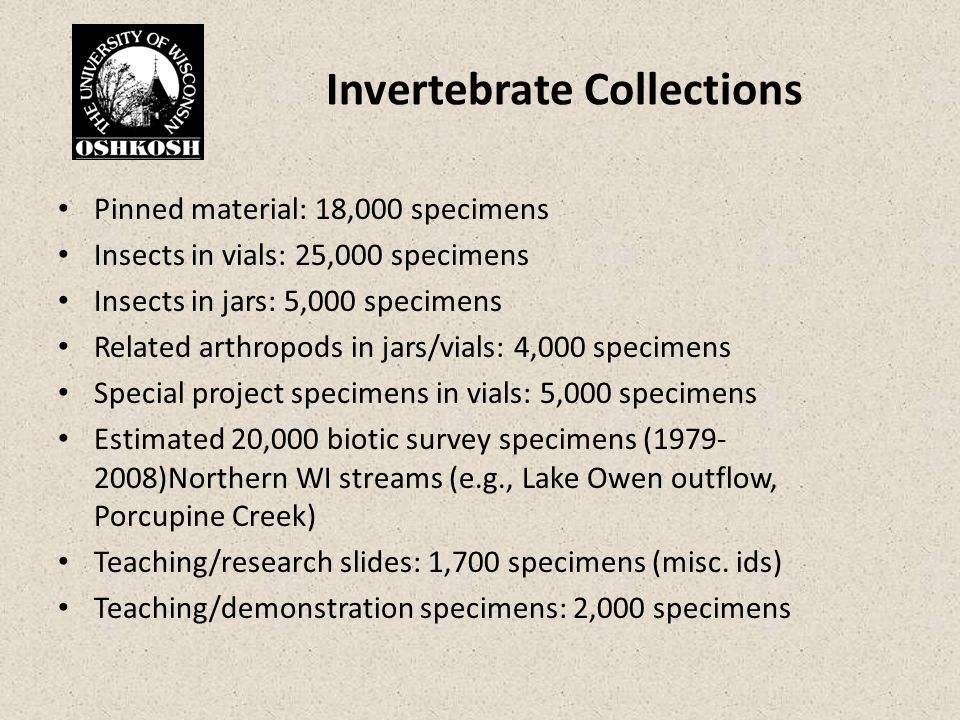 Invertebrate Collections Pinned material: 18,000 specimens Insects in vials: 25,000 specimens Insects in jars: 5,000 specimens Related arthropods in jars/vials: 4,000 specimens Special project specimens in vials: 5,000 specimens Estimated 20,000 biotic survey specimens (1979- 2008)Northern WI streams (e.g., Lake Owen outflow, Porcupine Creek) Teaching/research slides: 1,700 specimens (misc.