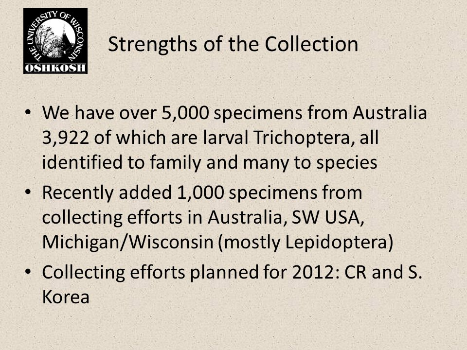 Strengths of the Collection We have over 5,000 specimens from Australia 3,922 of which are larval Trichoptera, all identified to family and many to species Recently added 1,000 specimens from collecting efforts in Australia, SW USA, Michigan/Wisconsin (mostly Lepidoptera) Collecting efforts planned for 2012: CR and S.