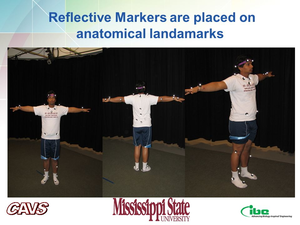 Reflective Markers are placed on anatomical landamarks