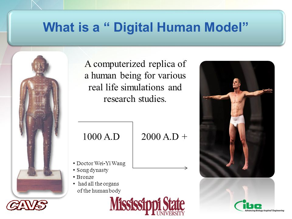 v What is a Digital Human Model 1000 A.D2000 A.D + A computerized replica of a human being for various real life simulations and research studies.