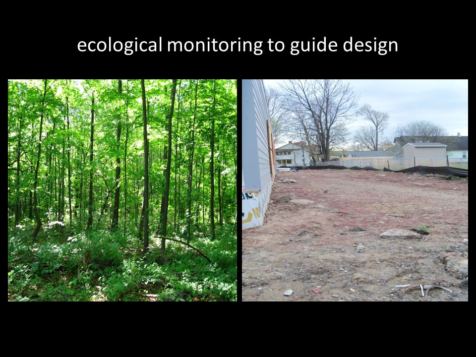 ecological monitoring to guide design