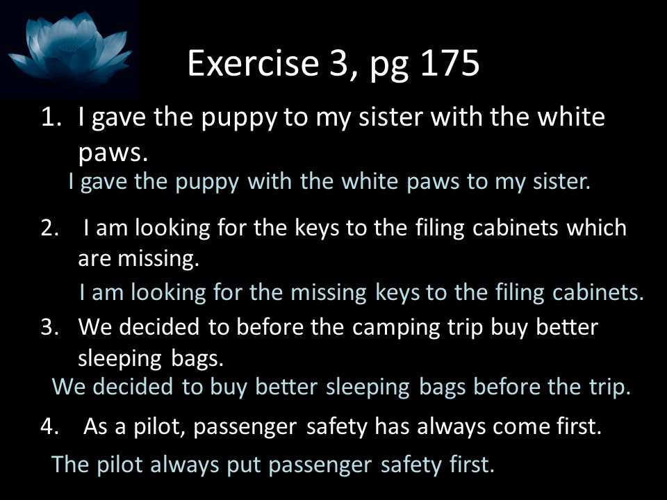 Exercise 3, pg 175 1.I gave the puppy to my sister with the white paws. 2. I am looking for the keys to the filing cabinets which are missing. 3.We de