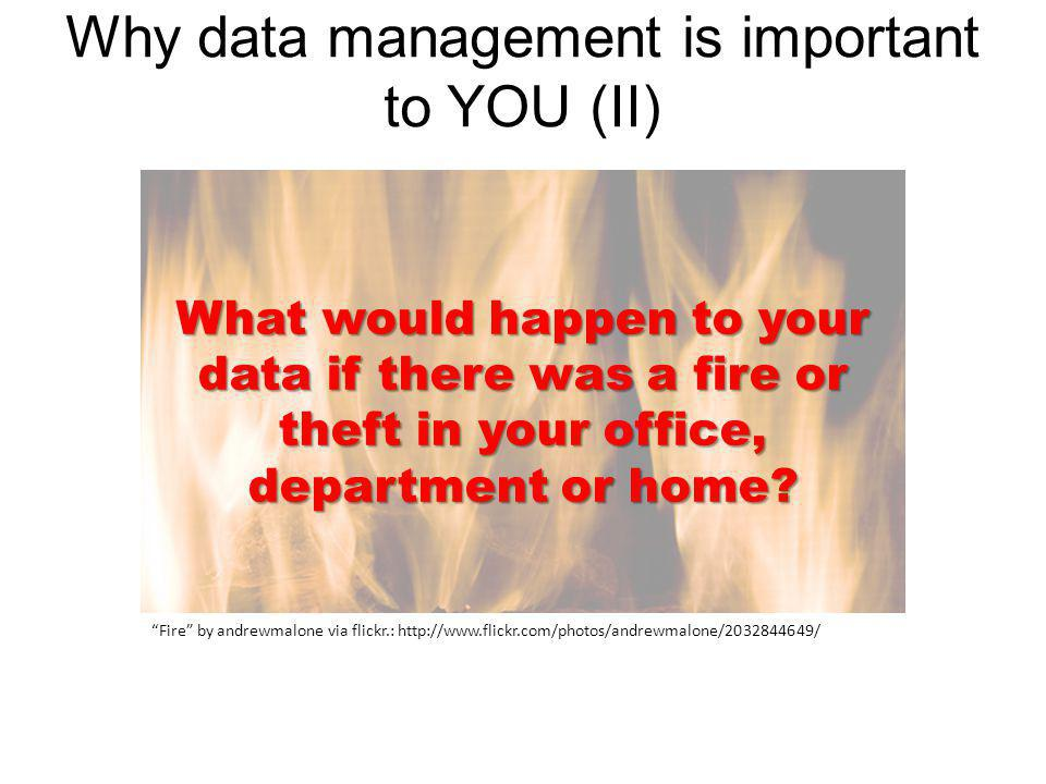Fire by andrewmalone via flickr.: http://www.flickr.com/photos/andrewmalone/2032844649/ What would happen to your data if there was a fire or theft in your office, department or home.