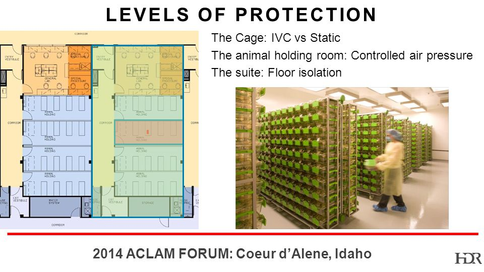 BR ACLAM FORUM: Coeur dAlene, Idaho LEVELS OF PROTECTION The Cage: IVC vs Static The animal holding room: Controlled air pressure The suite: Floor isolation