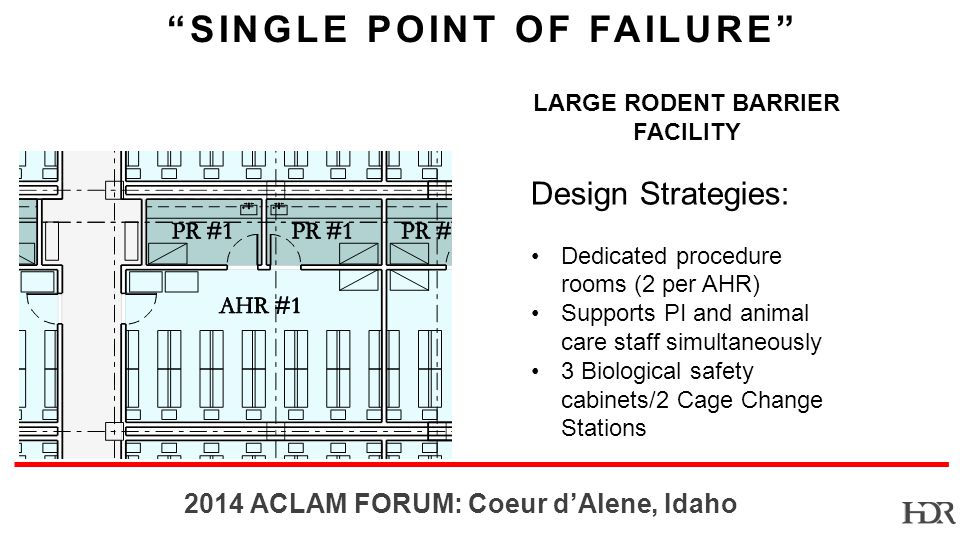 BR ACLAM FORUM: Coeur dAlene, Idaho SINGLE POINT OF FAILURE LARGE RODENT BARRIER FACILITY Design Strategies: Dedicated procedure rooms (2 per AHR) Supports PI and animal care staff simultaneously 3 Biological safety cabinets/2 Cage Change Stations