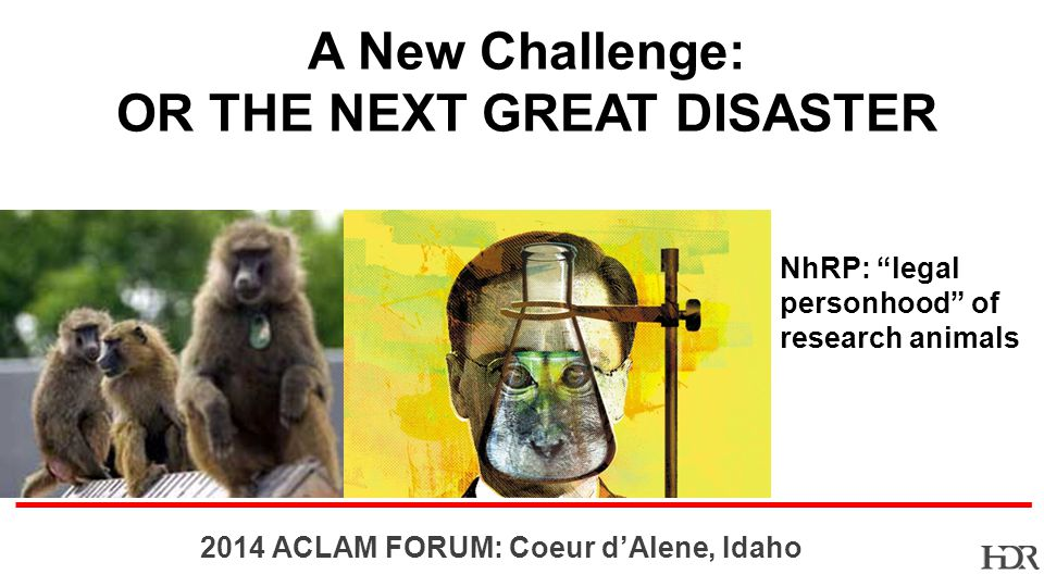 BR ACLAM FORUM: Coeur dAlene, Idaho NhRP: legal personhood of research animals A New Challenge: OR THE NEXT GREAT DISASTER