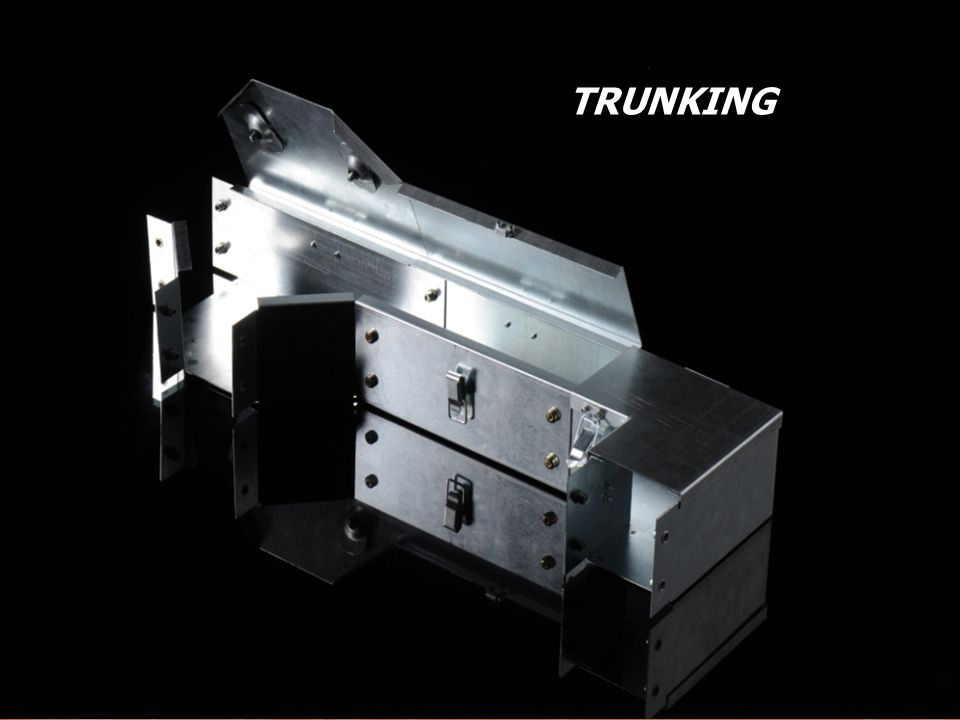 TRUNKING