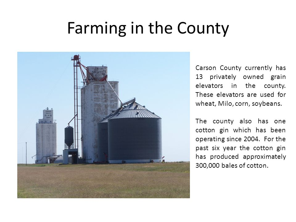 Farming in the County Carson County currently has 13 privately owned grain elevators in the county. These elevators are used for wheat, Milo, corn, so