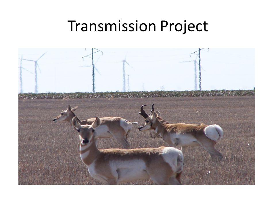 Transmission Project