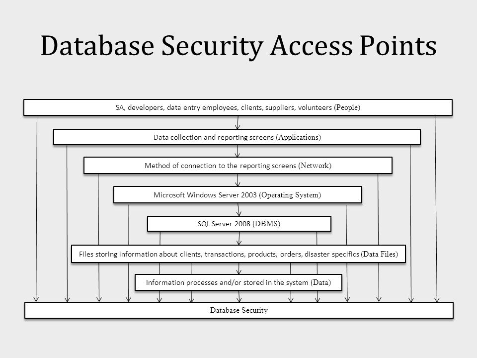 Database Security Access Points SA, developers, data entry employees, clients, suppliers, volunteers ( People) Data collection and reporting screens ( Applications) Method of connection to the reporting screens ( Network) Microsoft Windows Server 2003 ( Operating System) SQL Server 2008 ( DBMS) Files storing information about clients, transactions, products, orders, disaster specifics ( Data Files) Information processes and/or stored in the system ( Data) Database Security