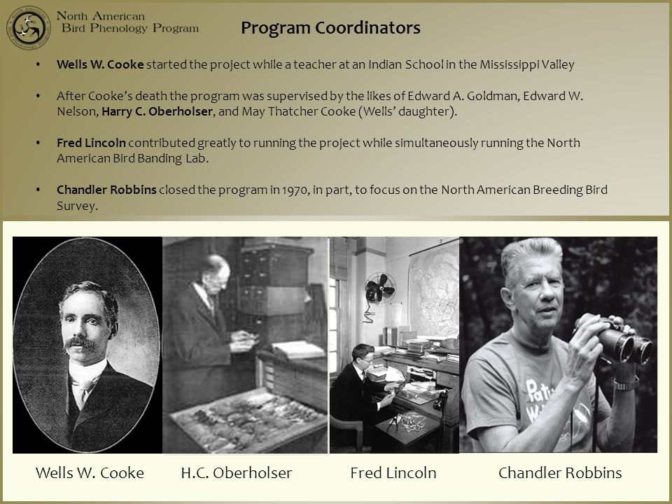 Wells W. Cooke H.C. Oberholser Fred Lincoln Chandler Robbins Program Coordinators Wells W. Cooke started the project while a teacher at an Indian Scho