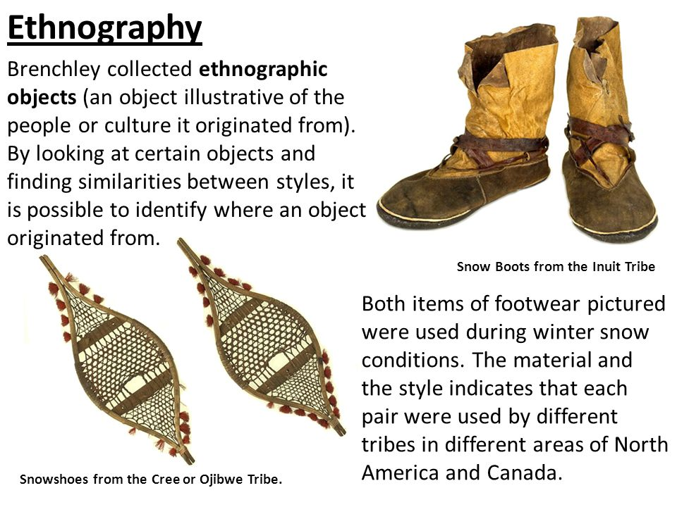 Ethnography Brenchley collected ethnographic objects (an object illustrative of the people or culture it originated from). By looking at certain objec