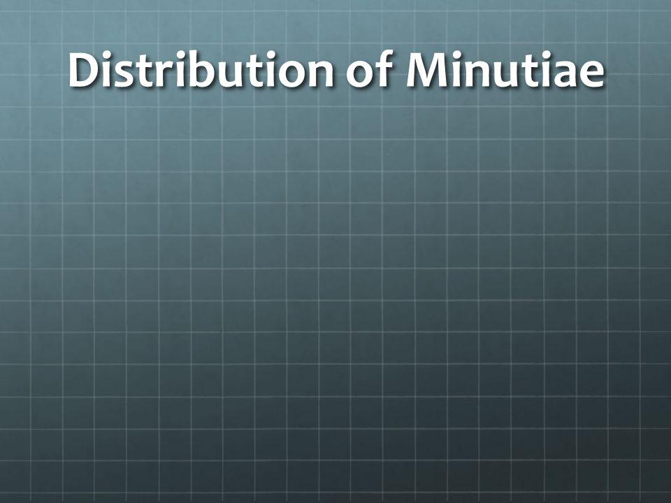 Distribution of Minutiae