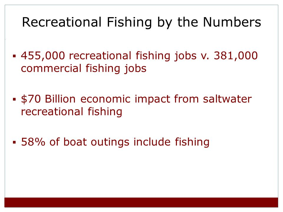 Recreational Fishing by the Numbers 455,000 recreational fishing jobs v.