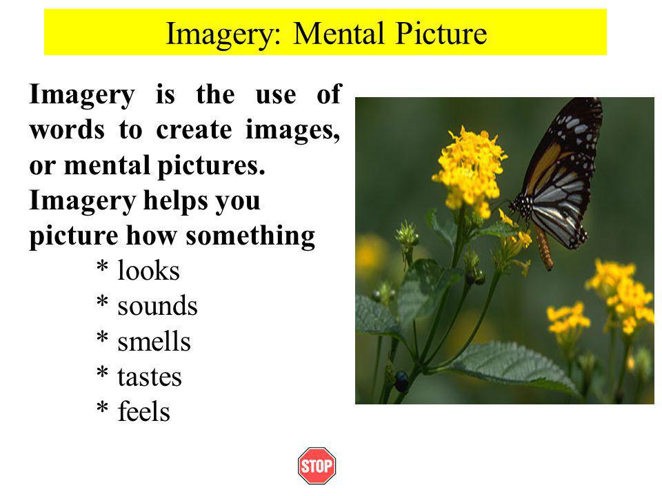 Imagery: Mental Picture Imagery is the use of words to create images, or mental pictures. Imagery helps you picture how something * looks * sounds * s
