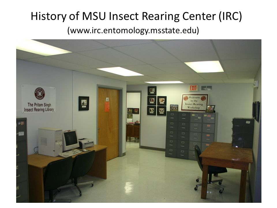 History of MSU Insect Rearing Center (IRC) (www.irc.entomology.msstate.edu)