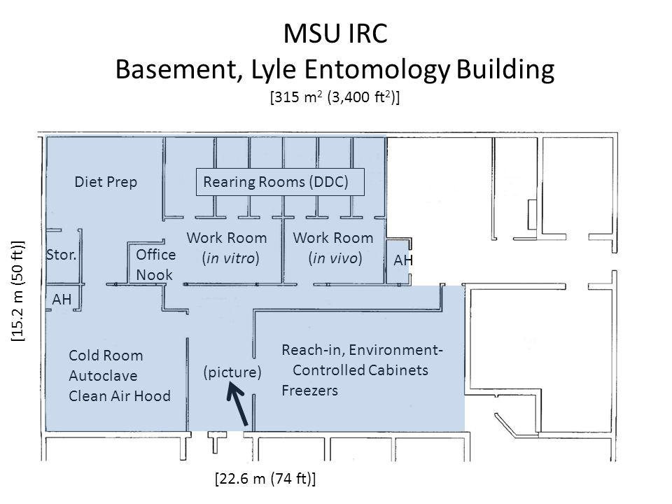 MSU IRC Basement, Lyle Entomology Building [315 m 2 (3,400 ft 2 )] [22.6 m (74 ft)] [15.2 m (50 ft)] Diet Prep Work Room (in vitro) Work Room (in vivo