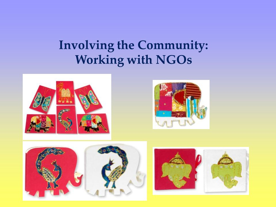Involving the Community: Working with NGOs
