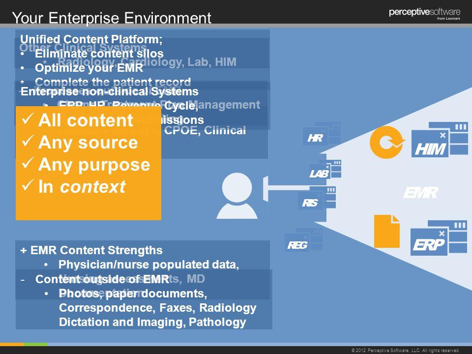 Your Enterprise Environment © 2012 Perceptive Software, LLC.