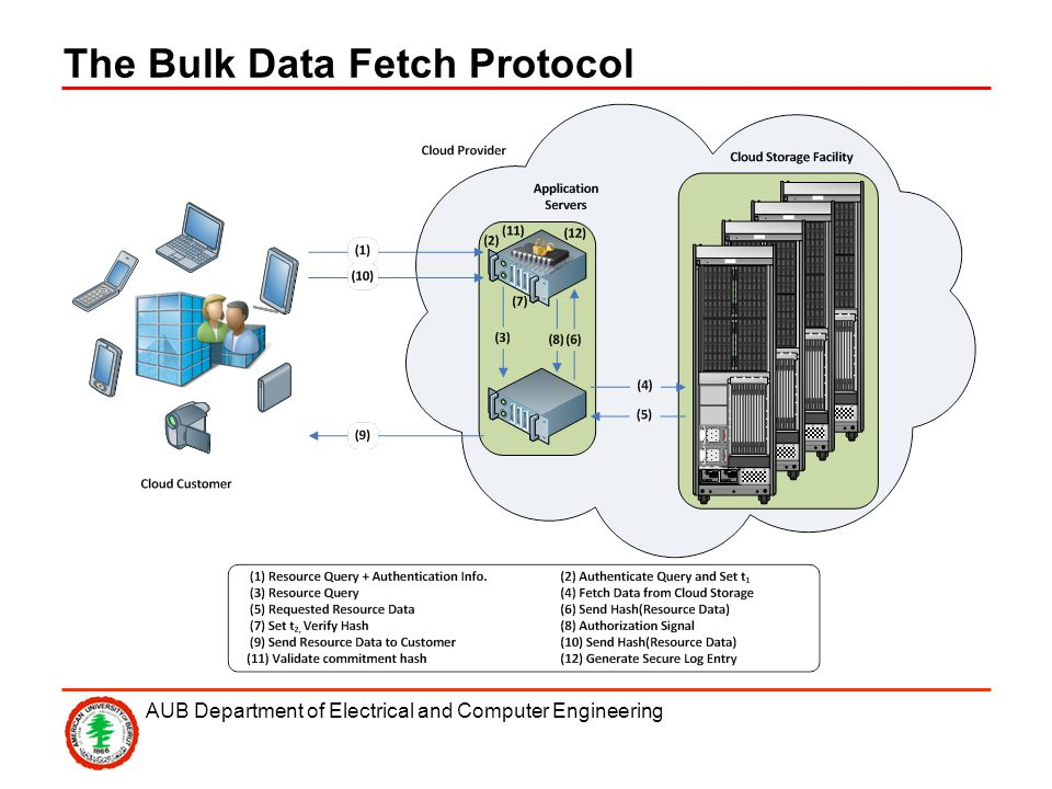 AUB Department of Electrical and Computer Engineering The Bulk Data Fetch Protocol
