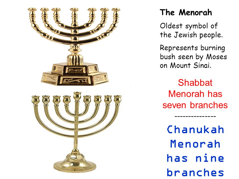 The Menorah Oldest symbol of the Jewish people.
